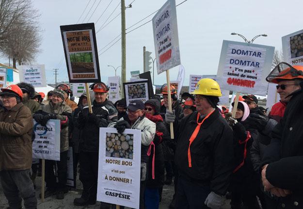 SHERBROOKE — Entre 200 et 250 producteurs forestiers en provenance des quatre coins du Québec ont manifesté ce matin à Sherbrooke !